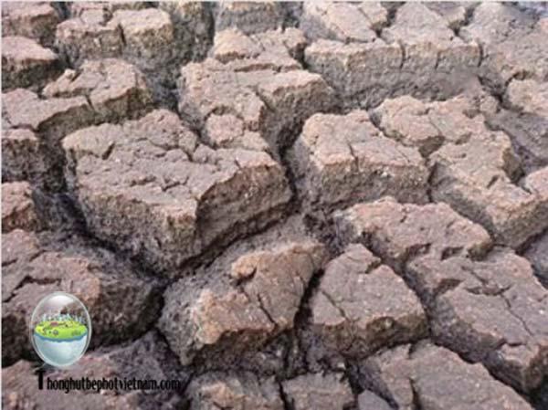 Nhược điểm phương pháp xử lý nước thải bằng sử dụng bùn vi sinh: