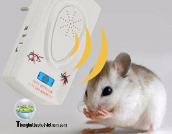 Dùng phần mềm đuổi chuột bằng sóng âm.